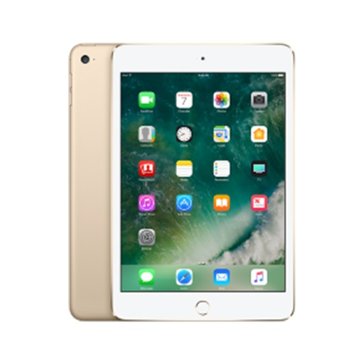 iPad mini 4 WiFi 4G